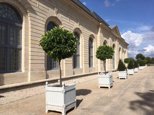 L'Orangerie de Sceaux