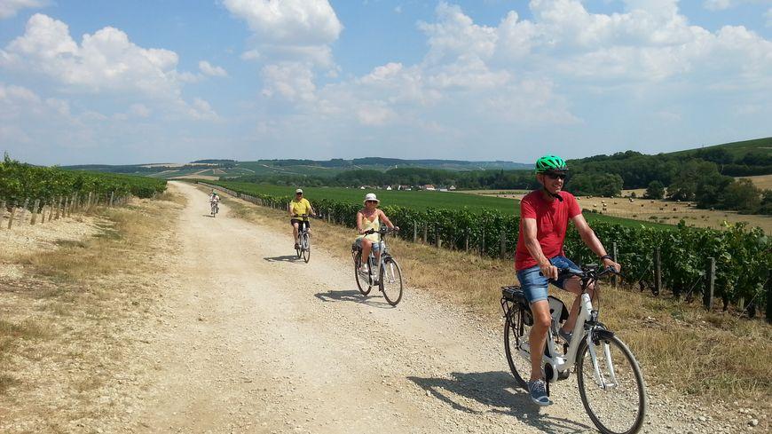 Ces touristes belges profitent d'une agréable balade en vélo électrique dans les vignes du chablisien