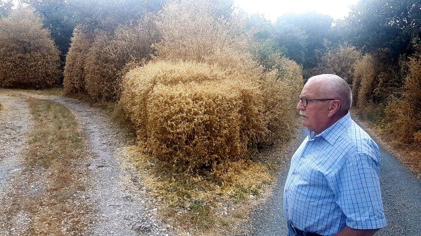 Robert GROS, le premier adjoint de Riols, ne peut que constater l'ampleur des dégâts
