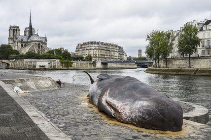 """L'année dernière, la sculpture d'une baleine échouée grandeur nature était exposée sur le quai de la Tournelle lors du festival """"Paris l'été"""""""