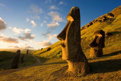Statue Maoi de l'île de Paques