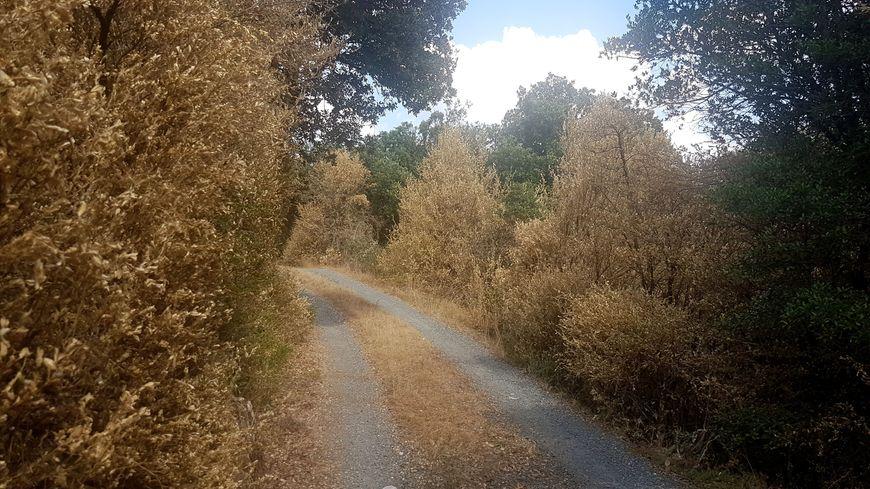 L'accés à l'un des hameaux de Riols