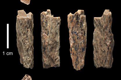 Fragments d'os de Denisova 11
