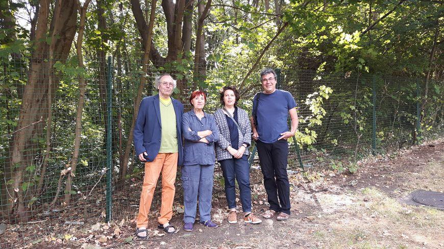 """Forêt de la corniche des forts à Romainville où une """"île de loisirs"""" doit être aménagée"""