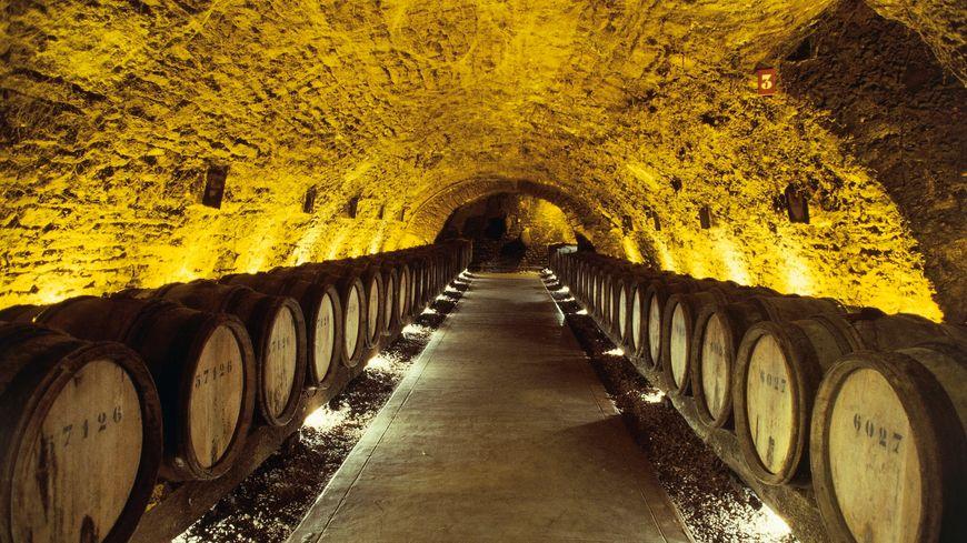 Les caves Patriarche de Beaune