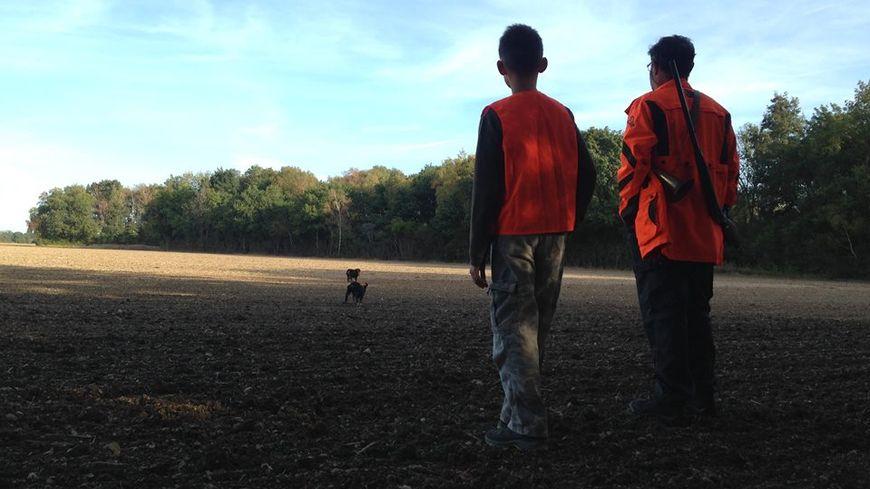 Les tiges devraient atteindre les 15 centimètres dans ce champs à cette période de l'année.