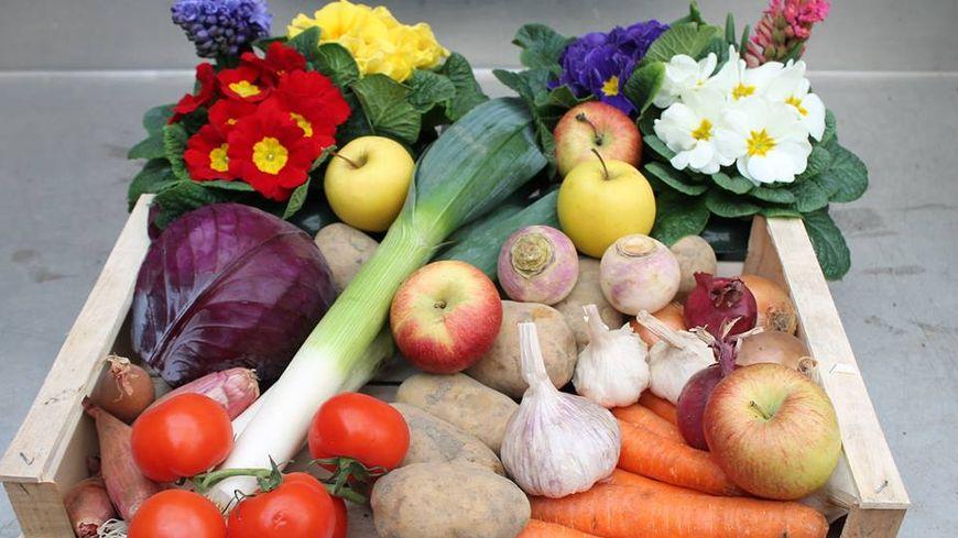 Les légumes de Jean-Marie Denu