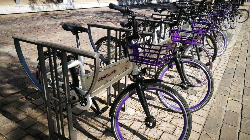 Des vélos Indigo Weel sagement garés à Metz