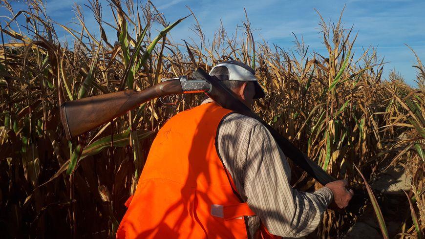 La chasse est autorisée depuis dimanche matin en Île-de-France
