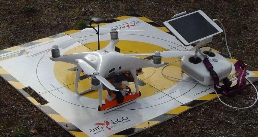 Le drône détecteur de nids de frelons asiatiques