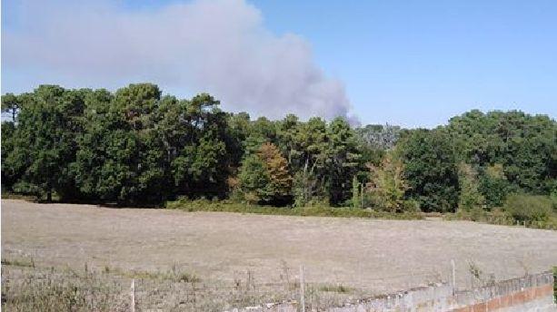 15 hectares de végétation ont brûlé à La Roche-Chalais.