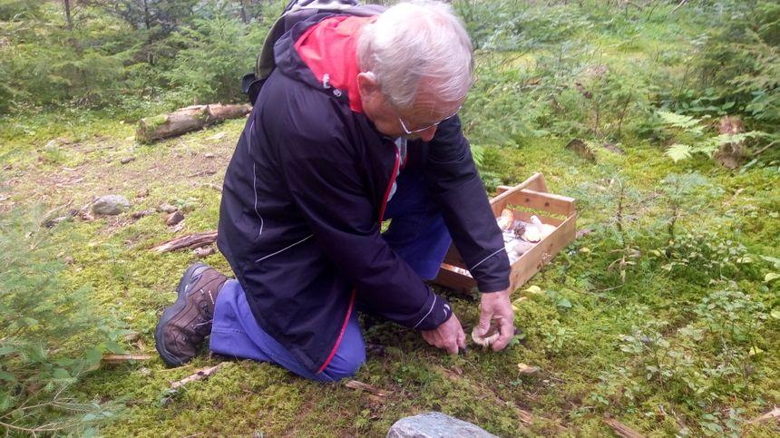 Un couteau, un panier, et de la connaissance : les champignons c'est un loisir pas cher !