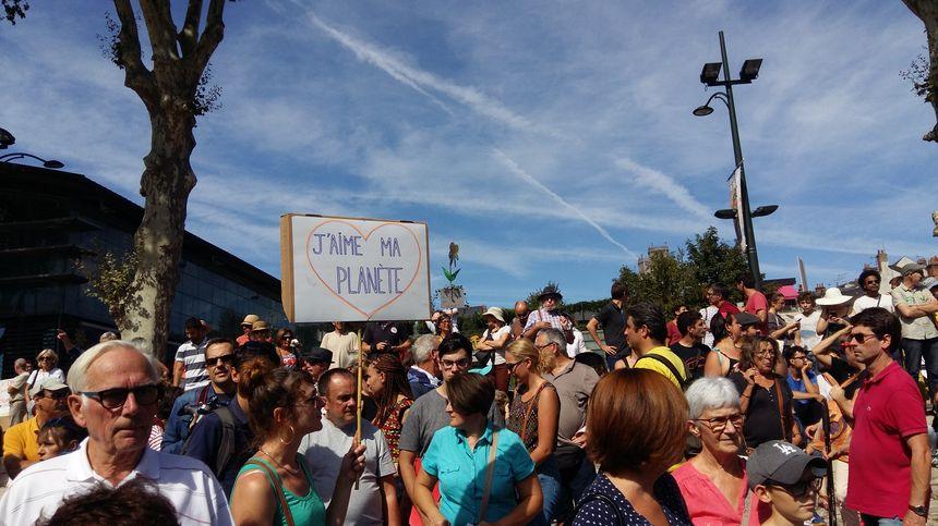 Un festival de pancartes...