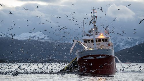 Épisode 3 : L'Europe garde la pêche