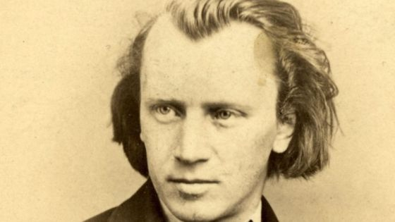 Johannes Brahms (1833-1897). Artist: Anonymous