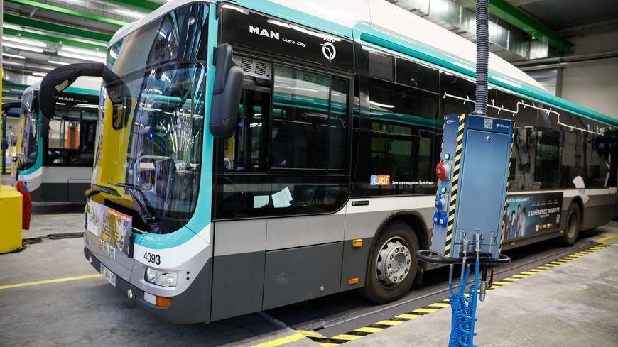 Illustration bus