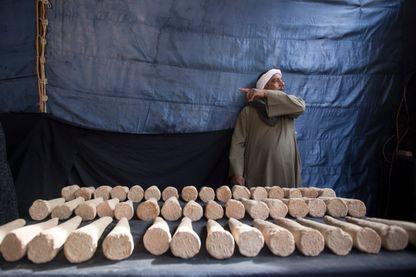 Fouilles archéologiques en Egypte (image d'illustration)