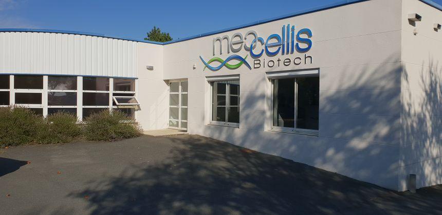 Les bureaux de Meccelllis Biotech  à Chef de Baie à La Rochelle