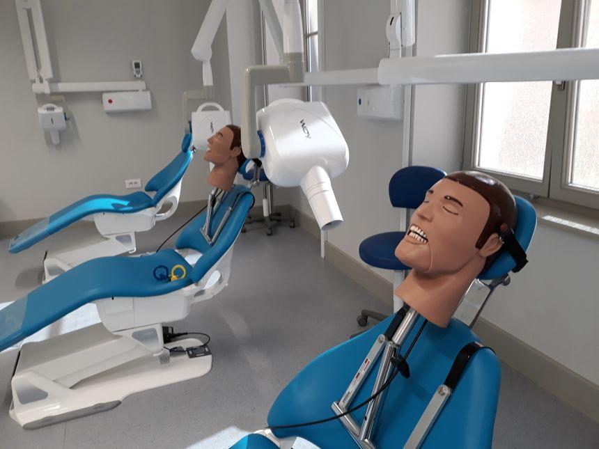 Les futurs dentistes s'entraînent aussi à faire des radios