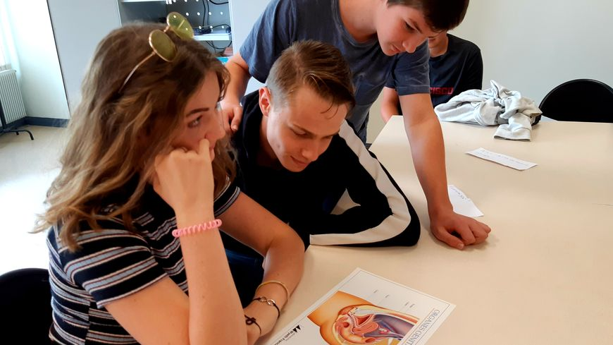 Les séances d'éducation sexuelle ont lieu une fois par an et par petit groupe d'une vingtaine d'élèves maximum.