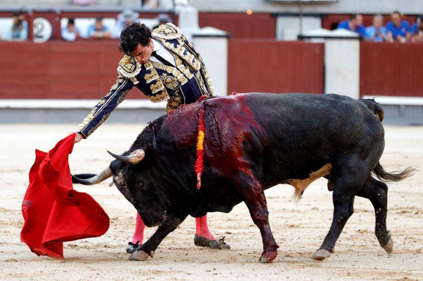 Dufau, après Madrid, nouvelle opportunité espagnole