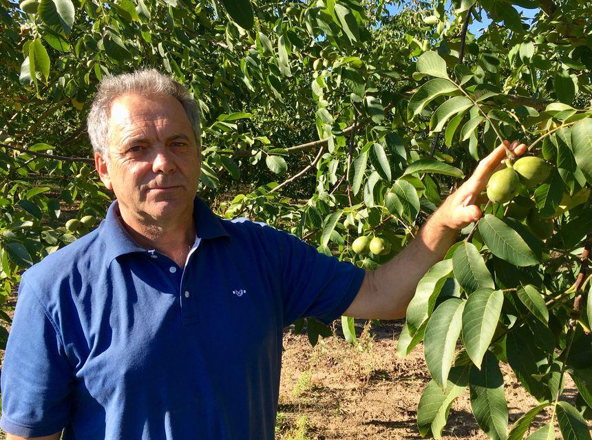 Le président de l'AOP Alain Pouquet est confiant dans cette récolte