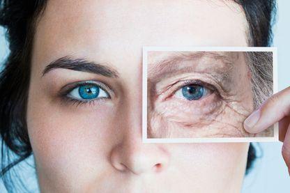 Sera-t-il possible, demain, de ralentir la dégénérescence des organes dû à la vieillesse et de leur redonner une deuxième jeunesse ?