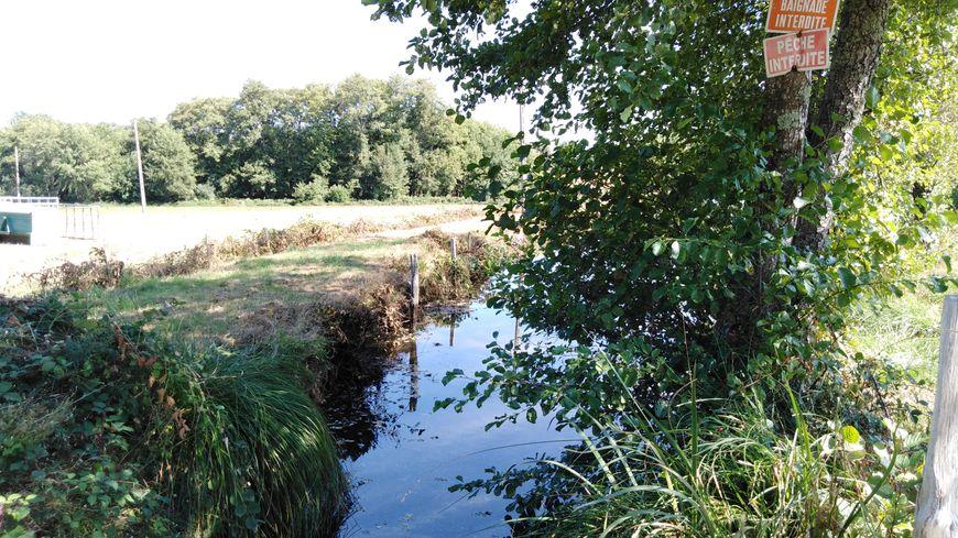 Les cours d'eau sont au plus bas en Creuse