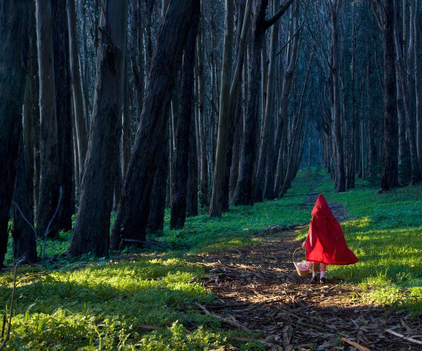Psychanalyse des contes de fées - Ép. 4/4 - Émerveillez-vous !