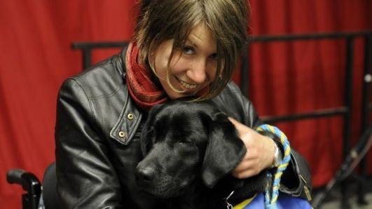 Danaé, chien d'assistance pour personne à mobilité réduite, a disparu mardi soir sur l'île de Nantes.