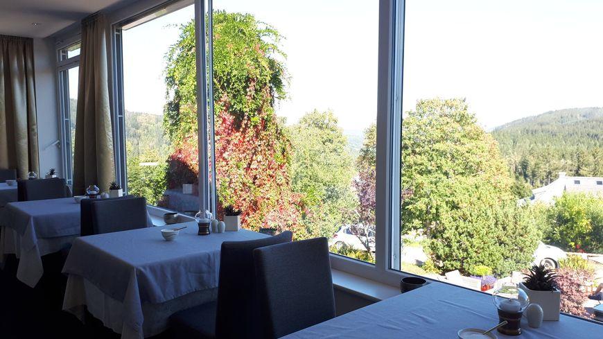 Depuis 2008, l'hôtel Tannhof en Forêt noire (Allemagne) n'accepte plus les enfants.