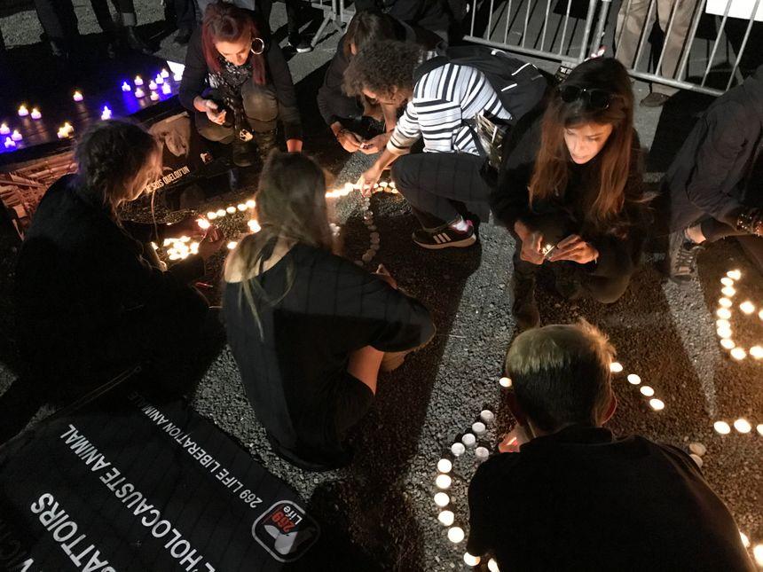 les militants allument de fausses bougies.
