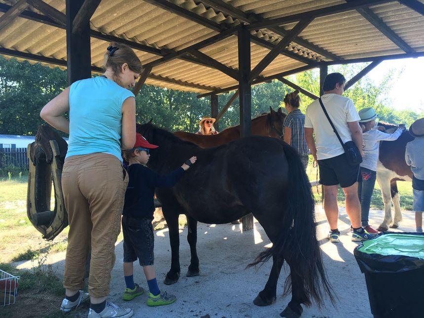 Les enfants apprennent aussi à prendre soin de leur monture, comme les cow-boys.