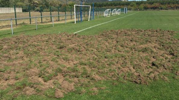 Les sangliers ont labouré un terrain du stade de la plaine à Saint-Péray