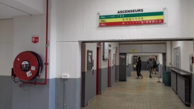 Les peintures ont été refaites dans les couloirs de l'université de Tolbiac