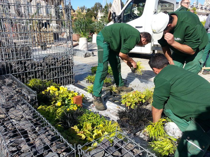 Sur la place Stanislas, les jardiniers s'activent avant l'ouverture du jardin éphémère le 29 septembre.