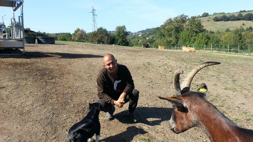 Ceylan Cirik travaille tous les jours au sanctuaire pour s'occuper des 40 animaux sauvés par l'association
