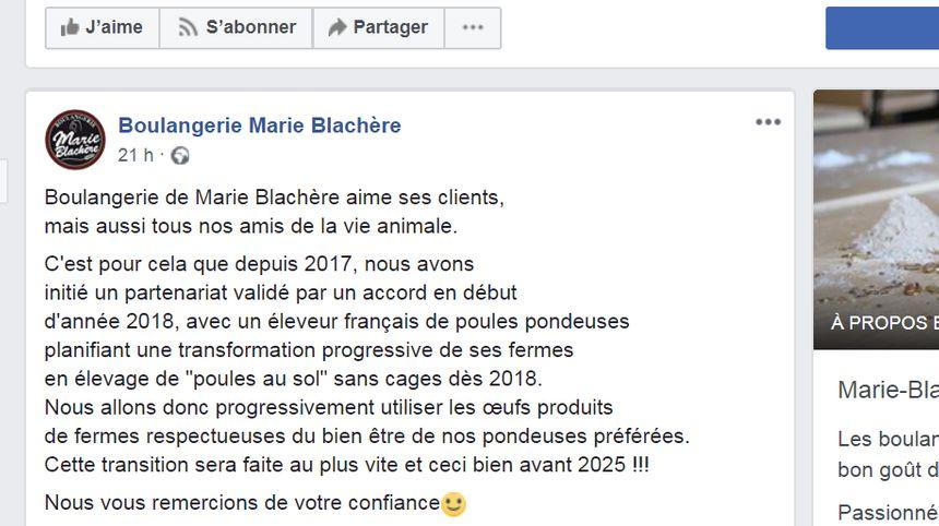 L'engagement écrit du groupe Marie Blachère sur internet © Radio France - copie d'écran Facebook