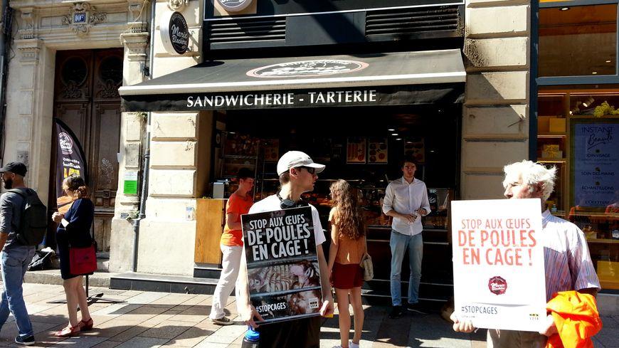 L214 devant la boulangerie Marie Blachère rue de la république à Avignon