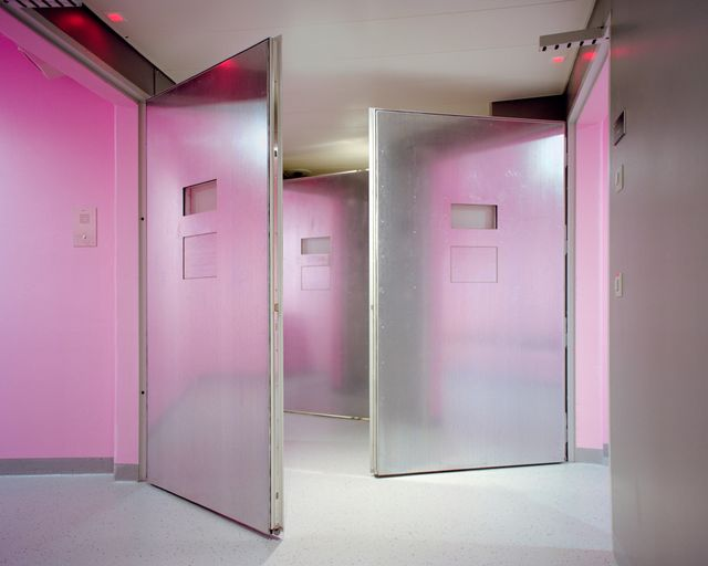 Angélique Stehli, Pink Cells, 2013/2017
