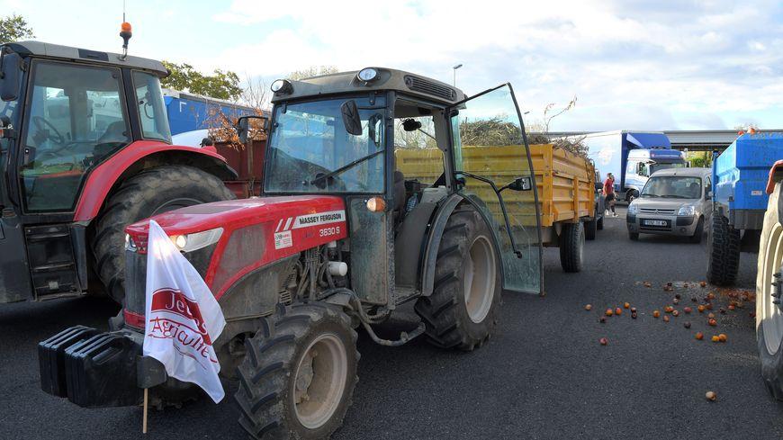 Les agriculteurs du Tarn-et-Garonne ont manifesté leur colère comme leurs collègues des Pyrénées Orientales (ici sur l'A9) en début de semaine.