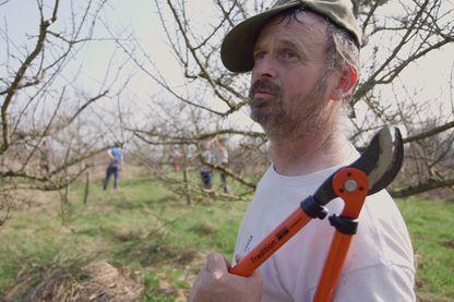 Semer, récolter, tailler, labourer, et voir renaitre la confiance en soi. Un documentaire sur les Jardins de Cocagne en Franche-Comté.
