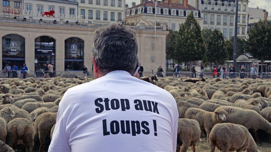 Une manifestation d'éleveurs à Lyon en 2017 (photo d'illustration)