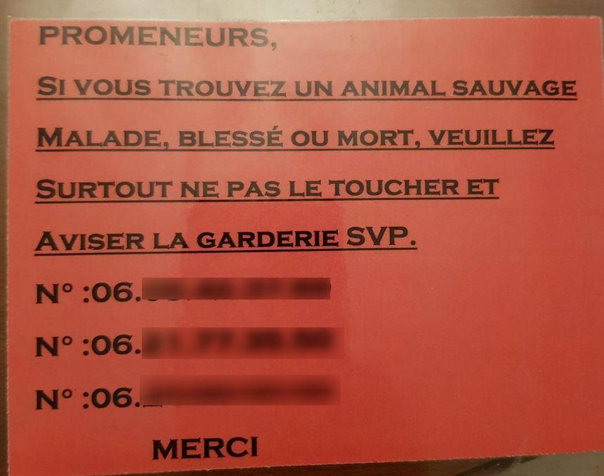 Le message plaqué par un chasseur sur des arbres dans le massif du salève, en haute-Savoie