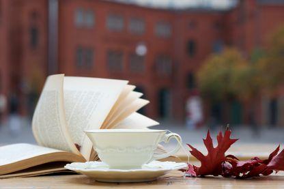 Que lire cet automne ? Nos critiques vous conseillent sur l'actualité littéraire de la rentrée