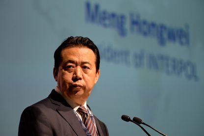 L'ancien président d'Interpol, Meng Hongwei, en juillet 2017