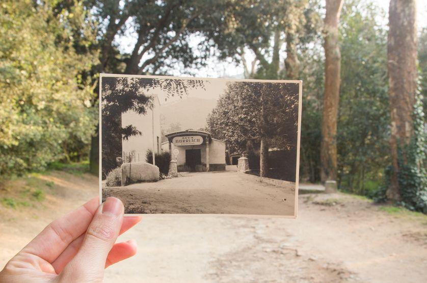 Histoire de la photographie (1/4) : Histoire de la photographie