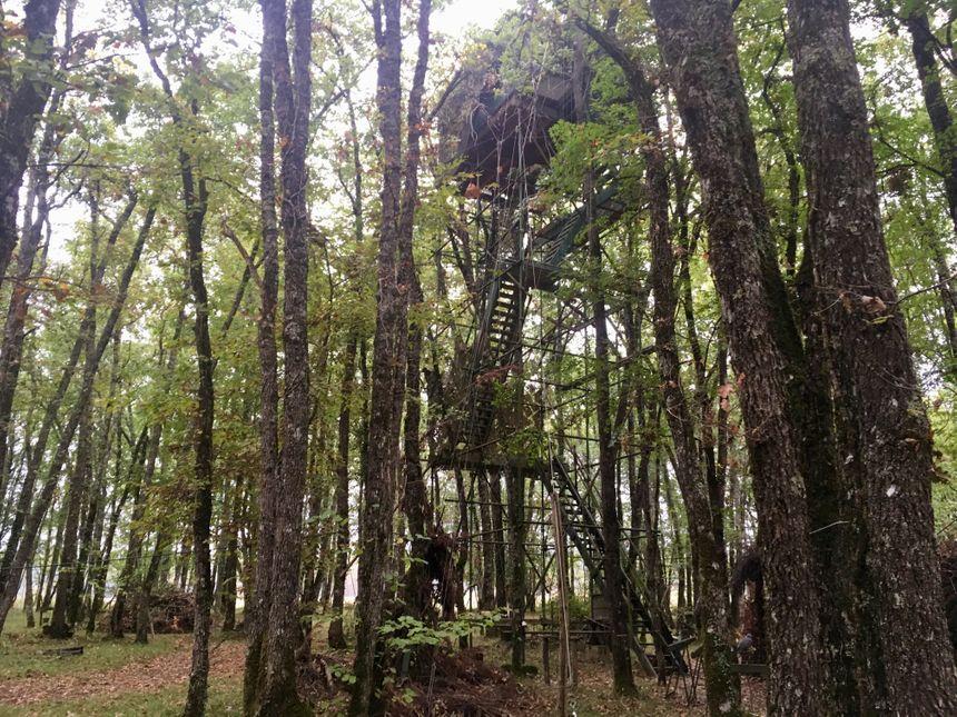 La palombière est perchée à 14 mètres de haut.