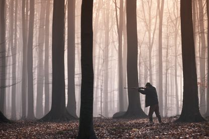 Une application pour partager la foret entre promeneurs et chasseurs
