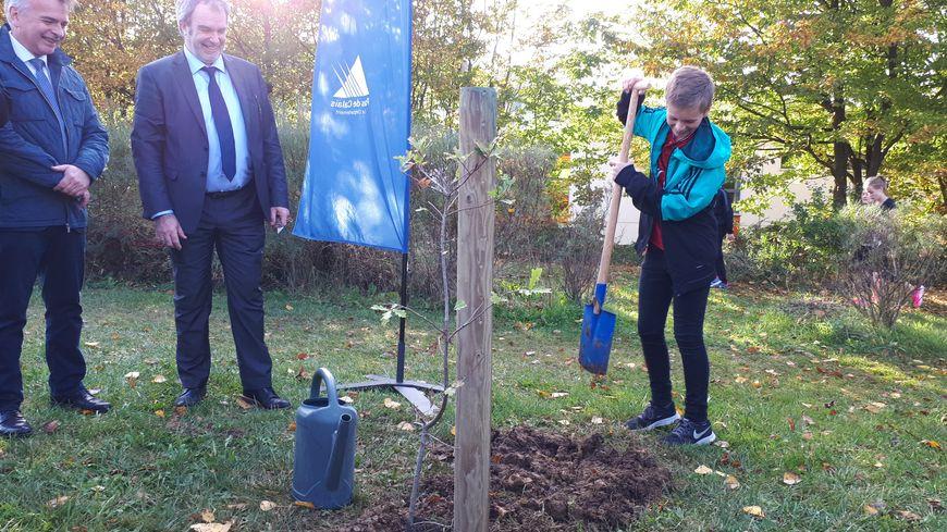 Un arbre de la paix et de la fraternité a été planté dans les collèges du Pas-de-Calais, cent ans après les derniers combats de la Grande guerre.